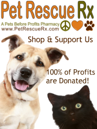 Purchase your pet's prescriptions here and raise money for Street Paws!